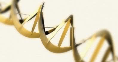 engenharia biologica - bioengenharia