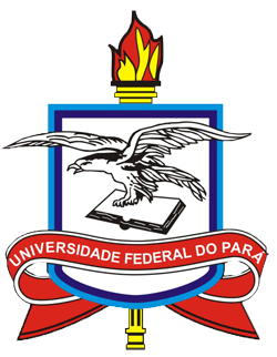 engenharia mecanica UFPA
