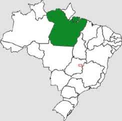 Faculdade de Engenharia Elétrica no Pará