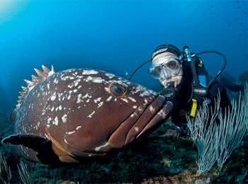 Quanto ganha um Oceanógrafo?