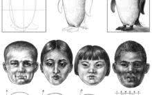 Curso para Aprender a Desenhar